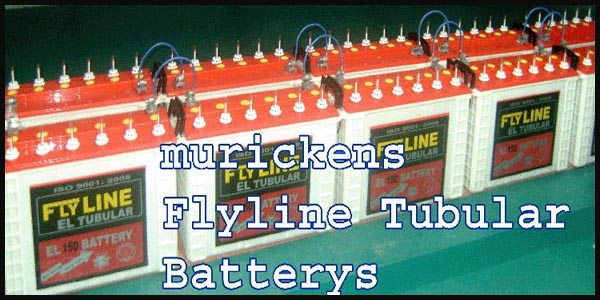 Flyline Tubular Battery